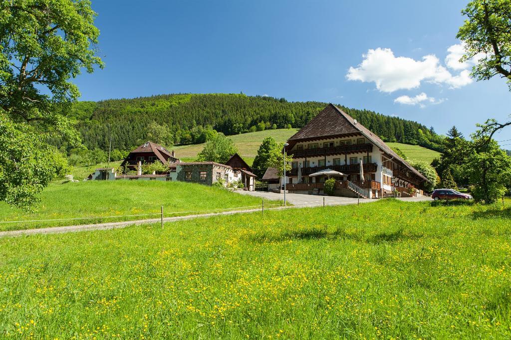 Landgasthaus Gruener Baum