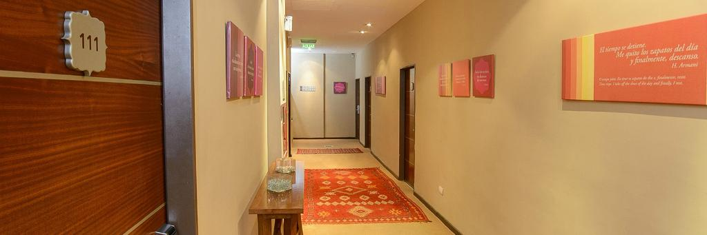 알마 델 플라타 부에노스 아이레스 호텔