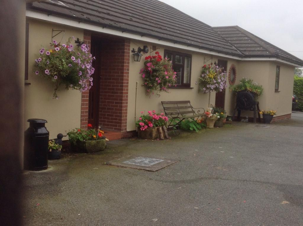 Ty Coch Bungalow B&B