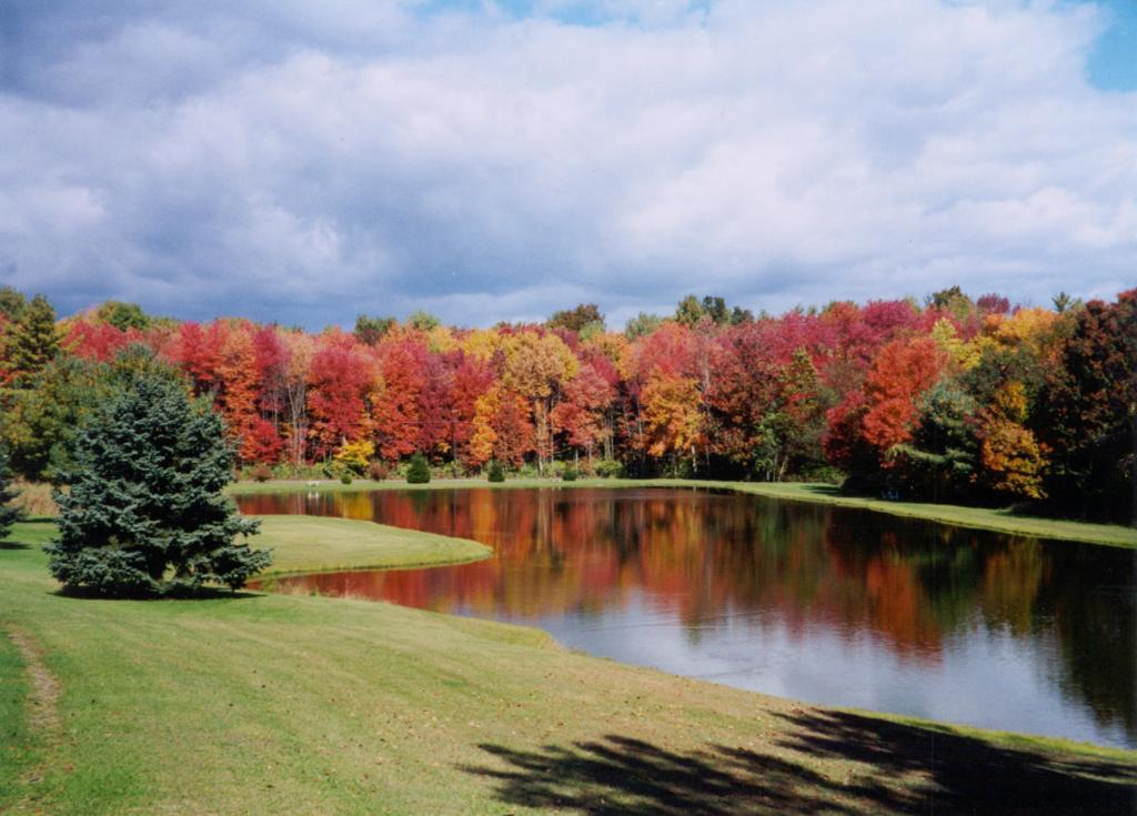 Whispering Pines Camping Estates