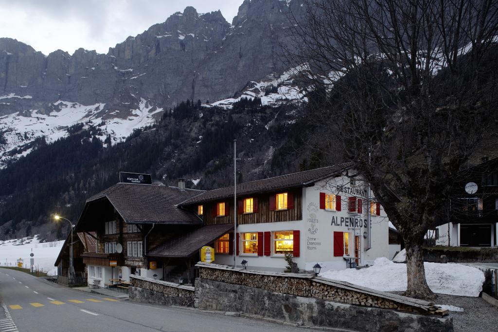 Alpenrose Gadmen