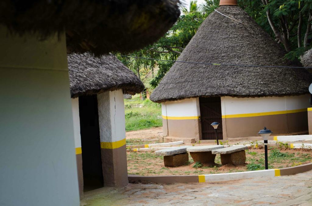 Jain Farms