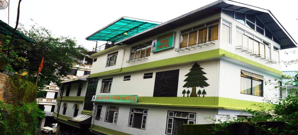 Juniper Tree Hotel