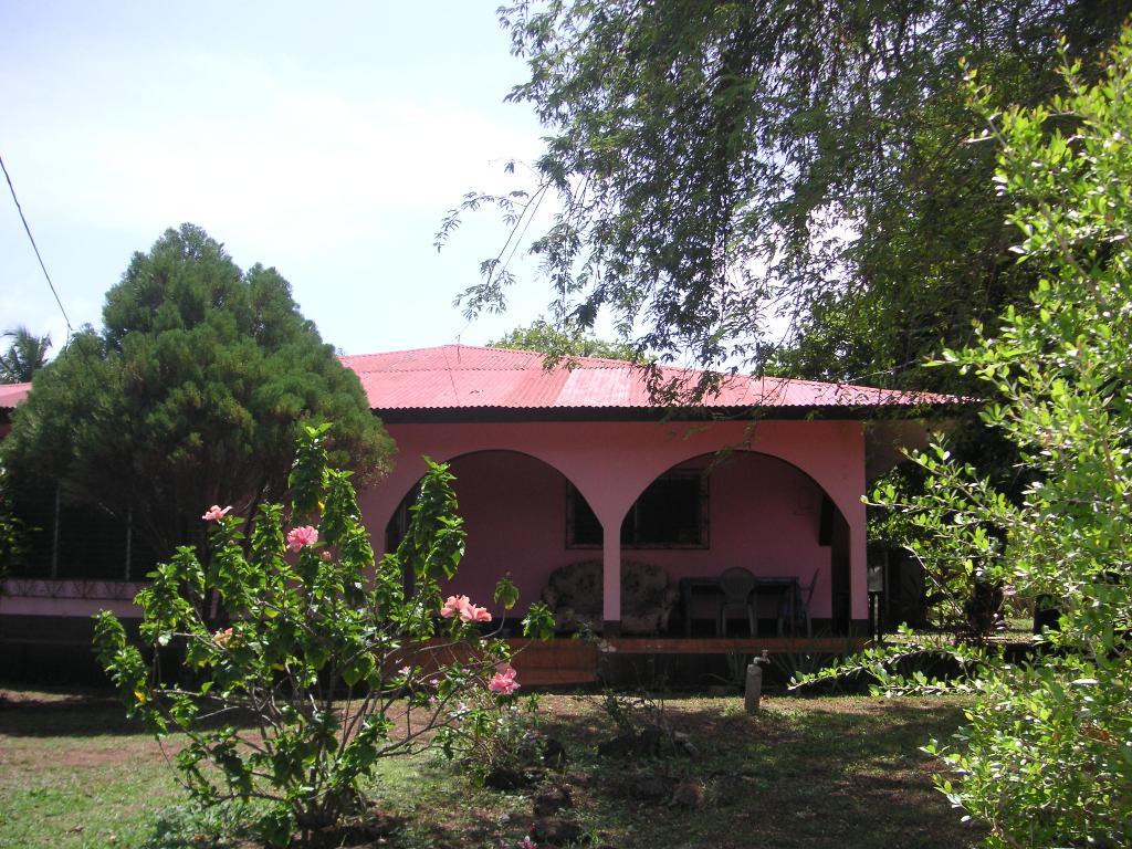 Tropical Dreams Hotel