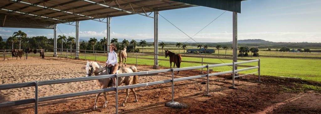 Ports Horse Farm