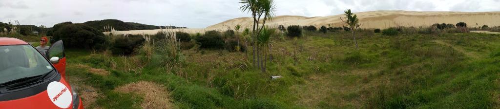 Sand Dunes, Te Paki