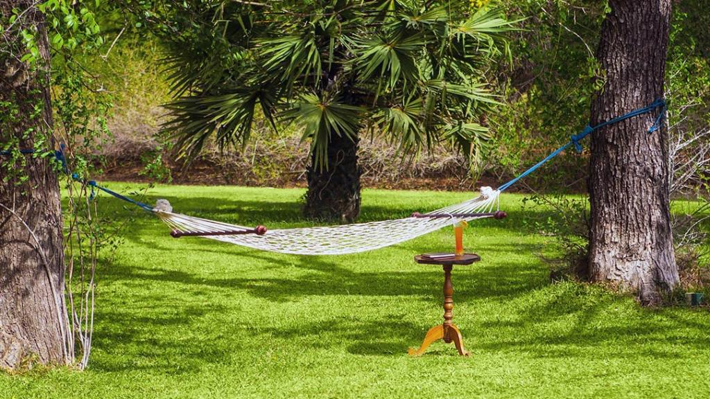 Dhardo Retreat & Resort