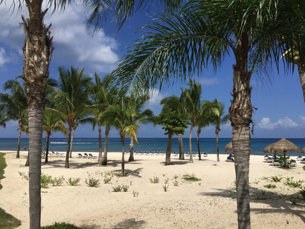 Residencias Reef Condos
