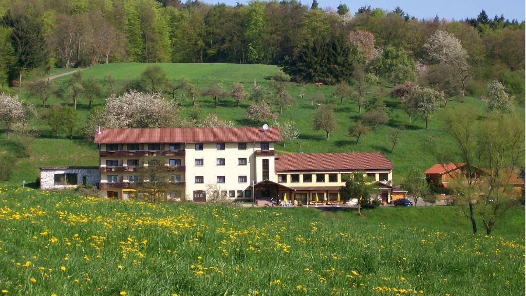 Hotel Dornroeschen