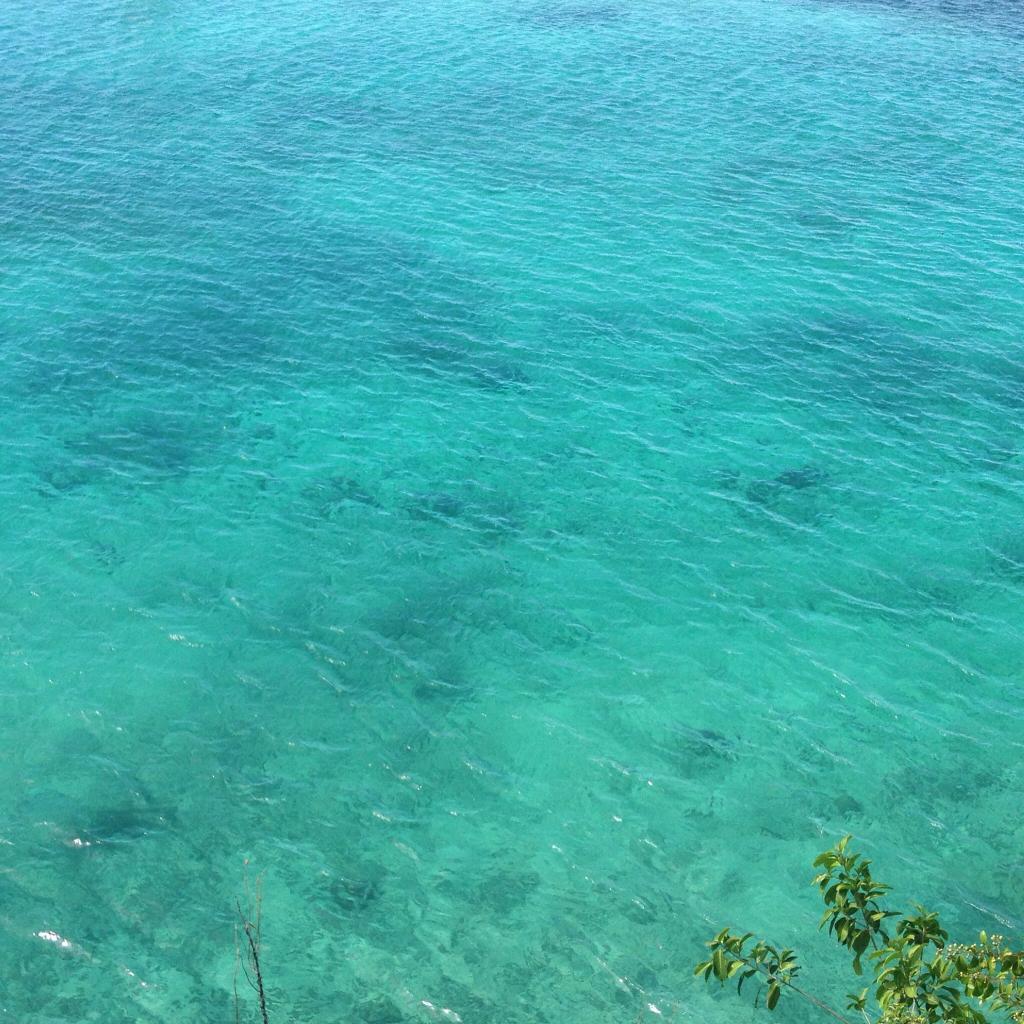 Carib-Ocho Rios