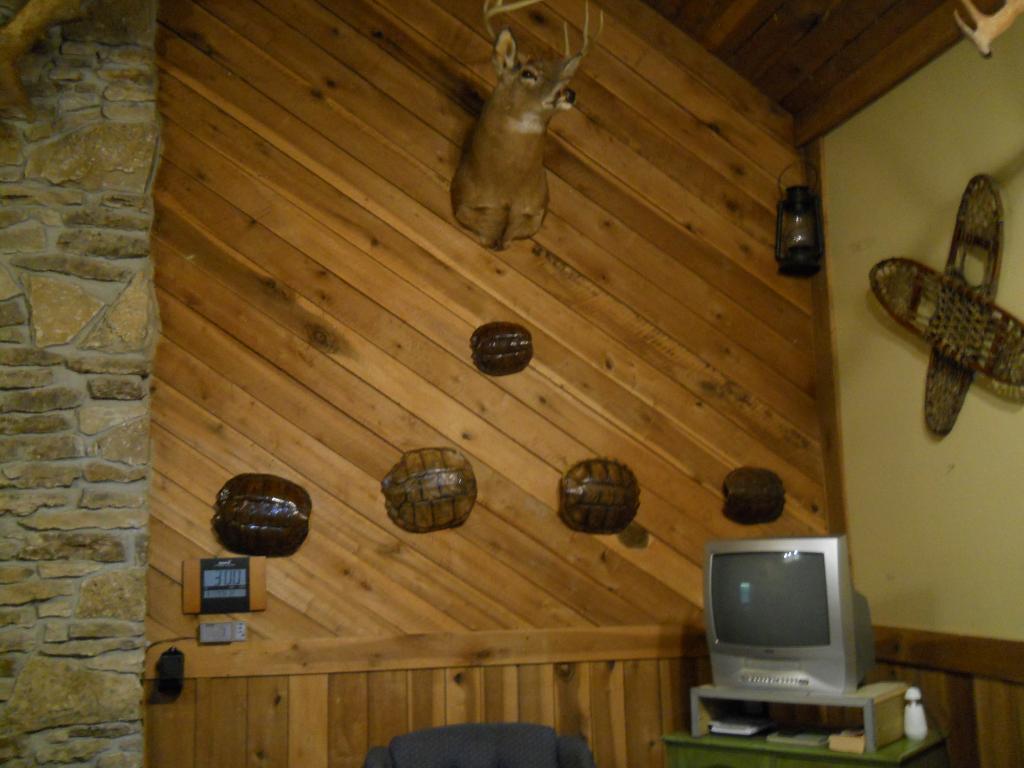 White Oaks Cabins