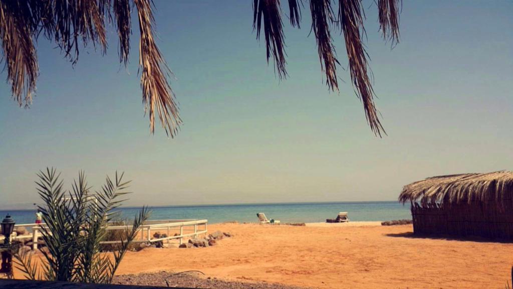 Asala Beach Camp