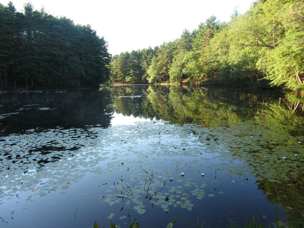 Lorraine Park Campground