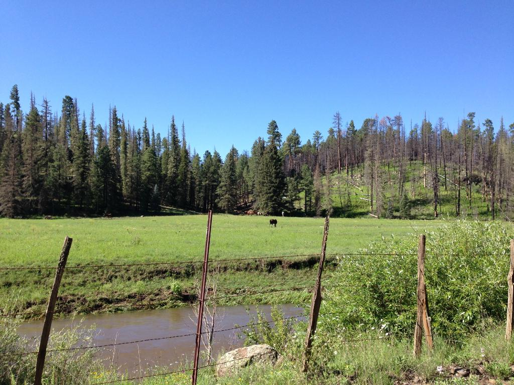 Sprucedale Guest Ranch