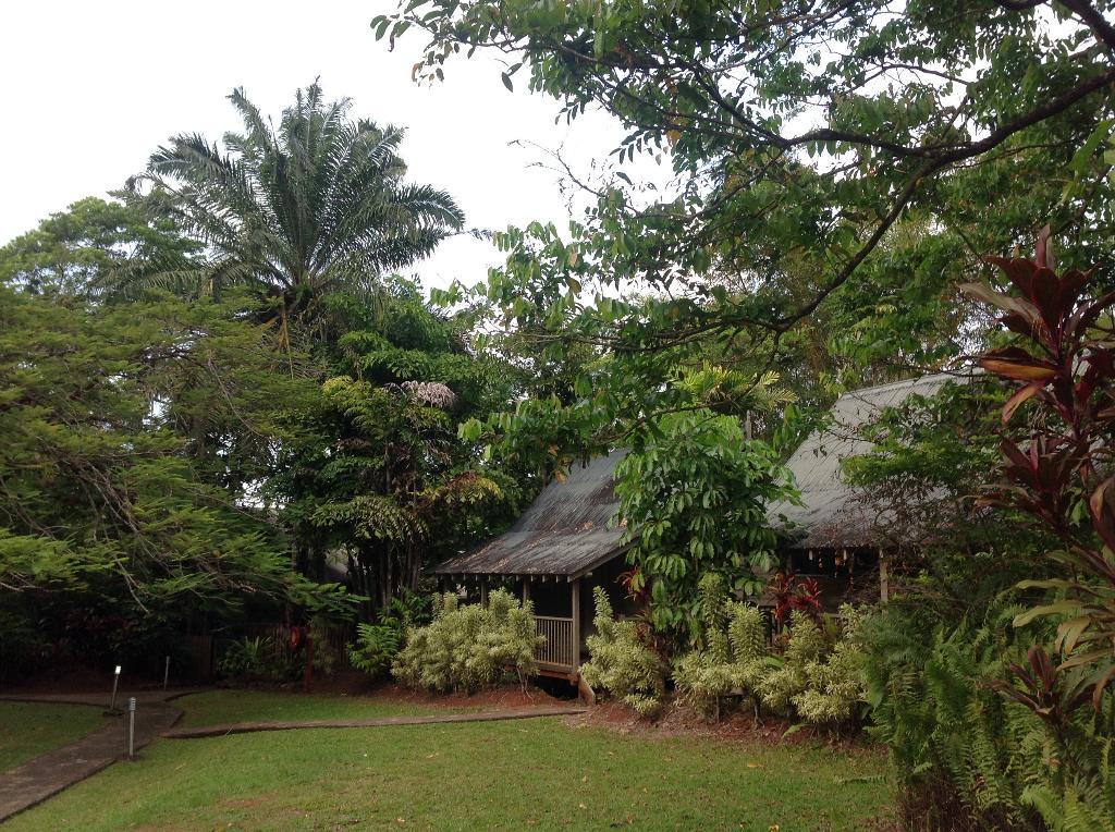 芬特里雨林旅館