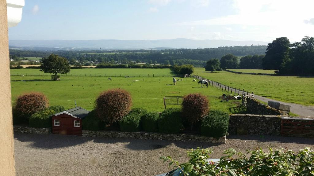 Whitbysteads Hill Farm