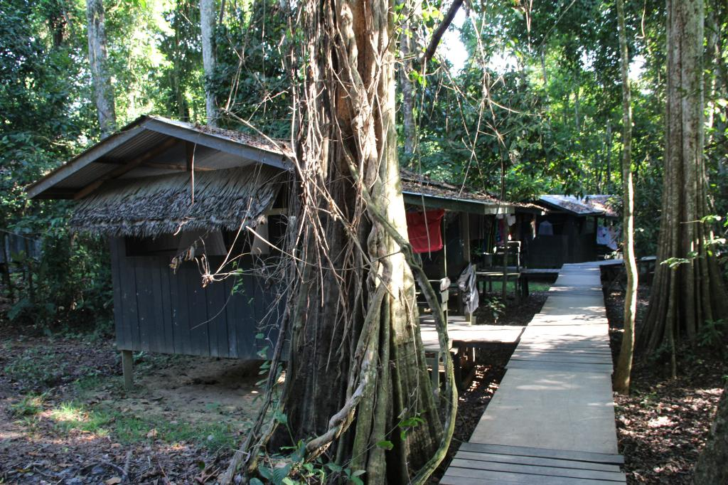 Uncle Tan Wildlife Camp