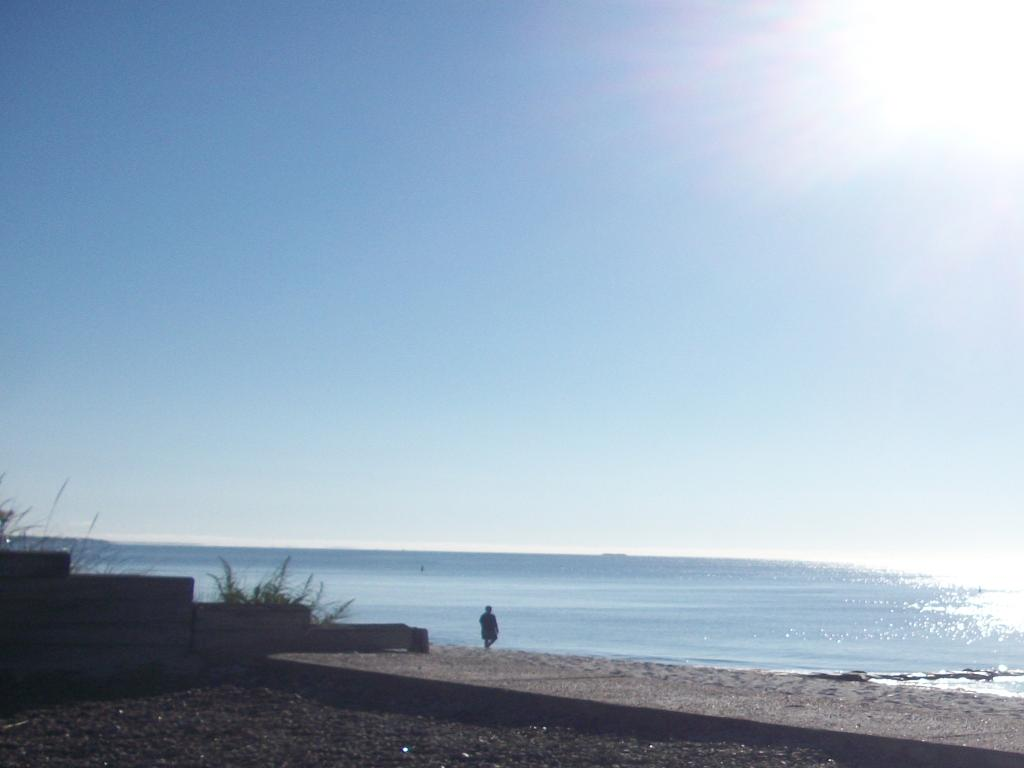 Surfcomber on the Ocean