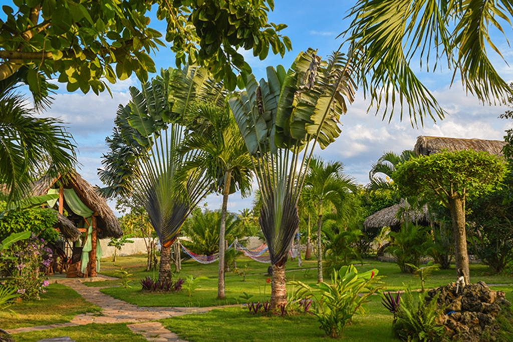 Chalet Tropical Village