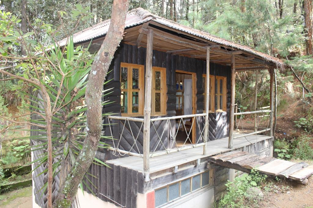 ‪Corazon del Bosque‬