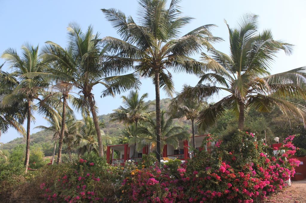 Sagar Hill Resort