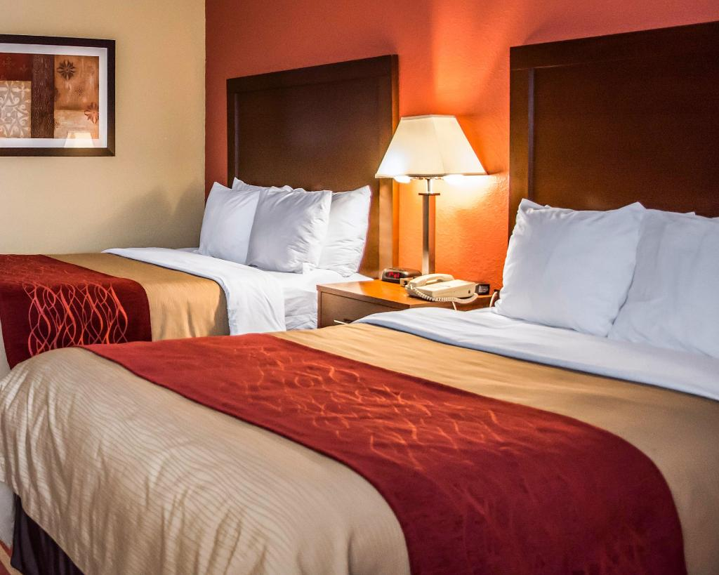 Comfort Inn & Suites Eastgate