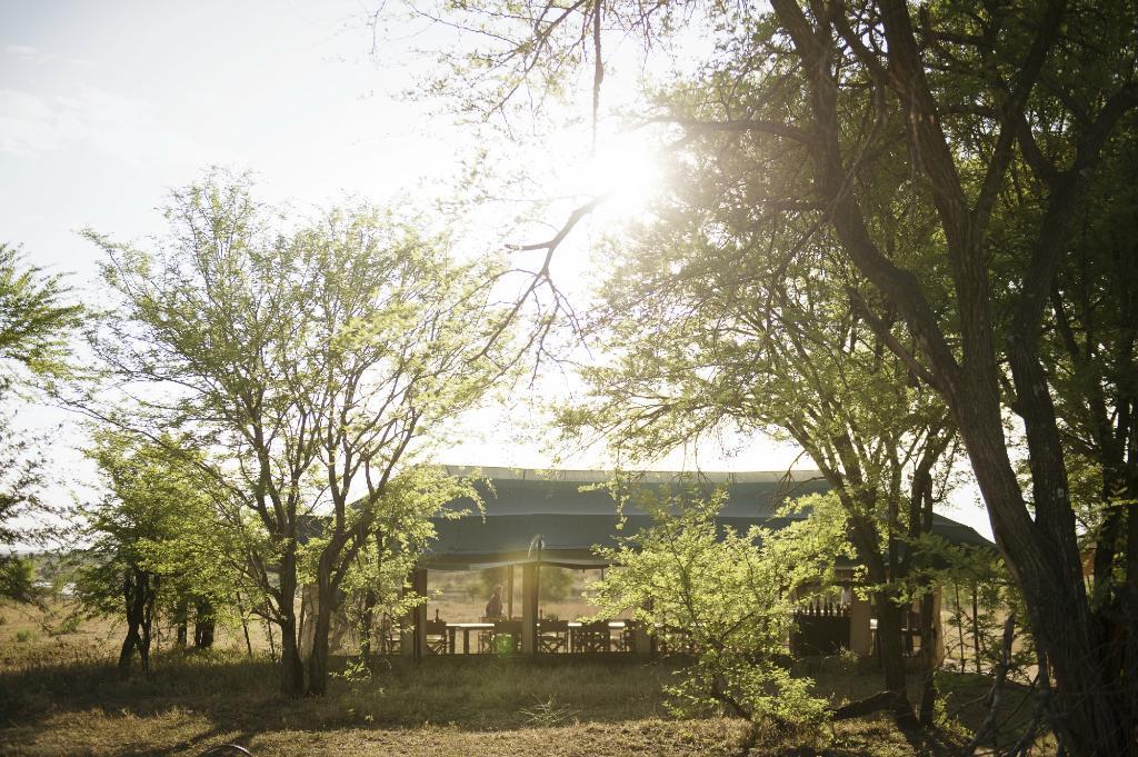 Olakira Camp, Asilia Africa
