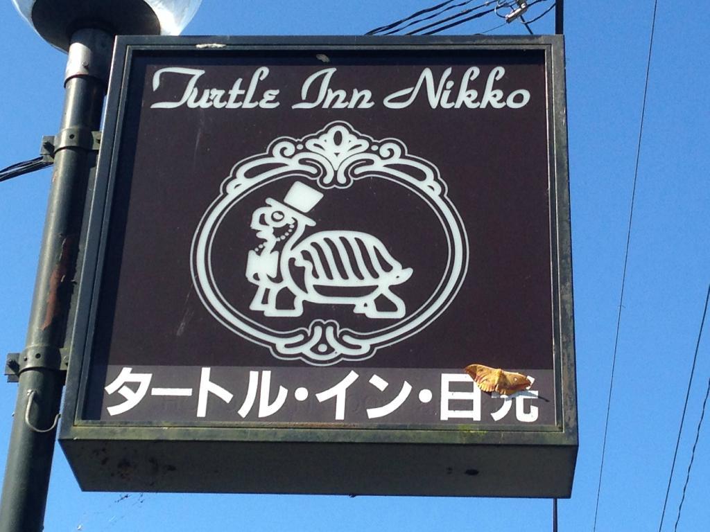 تيرتل إن نيكو