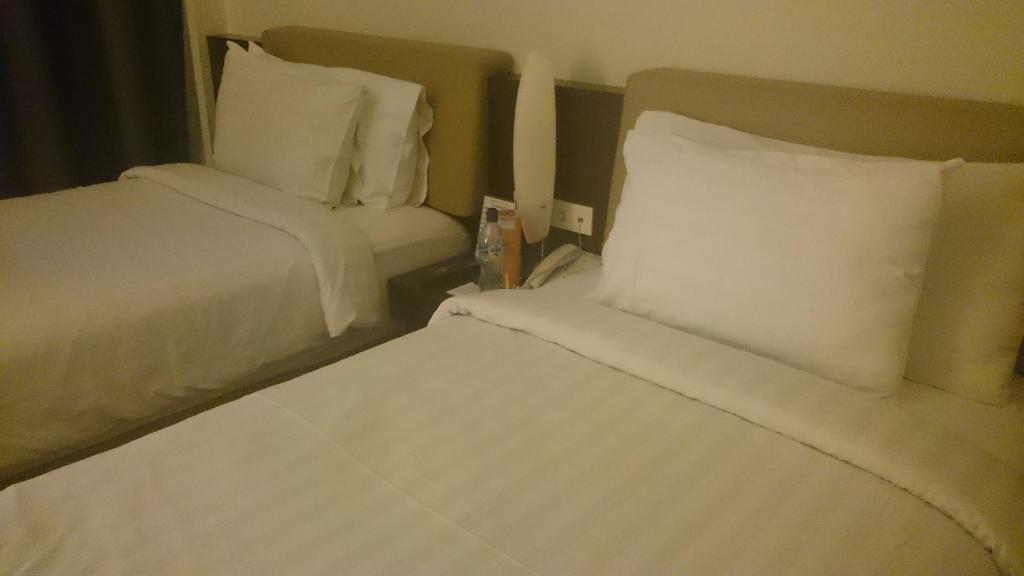 阿斯頓納文帝國酒店