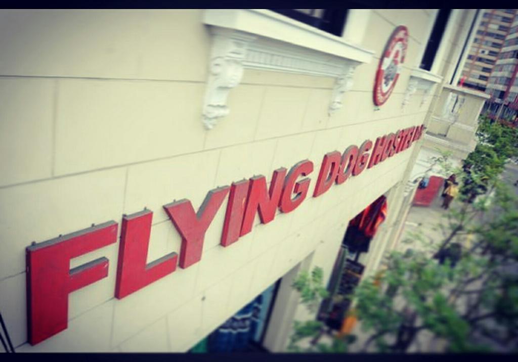 Flying Dog Hostel B&B