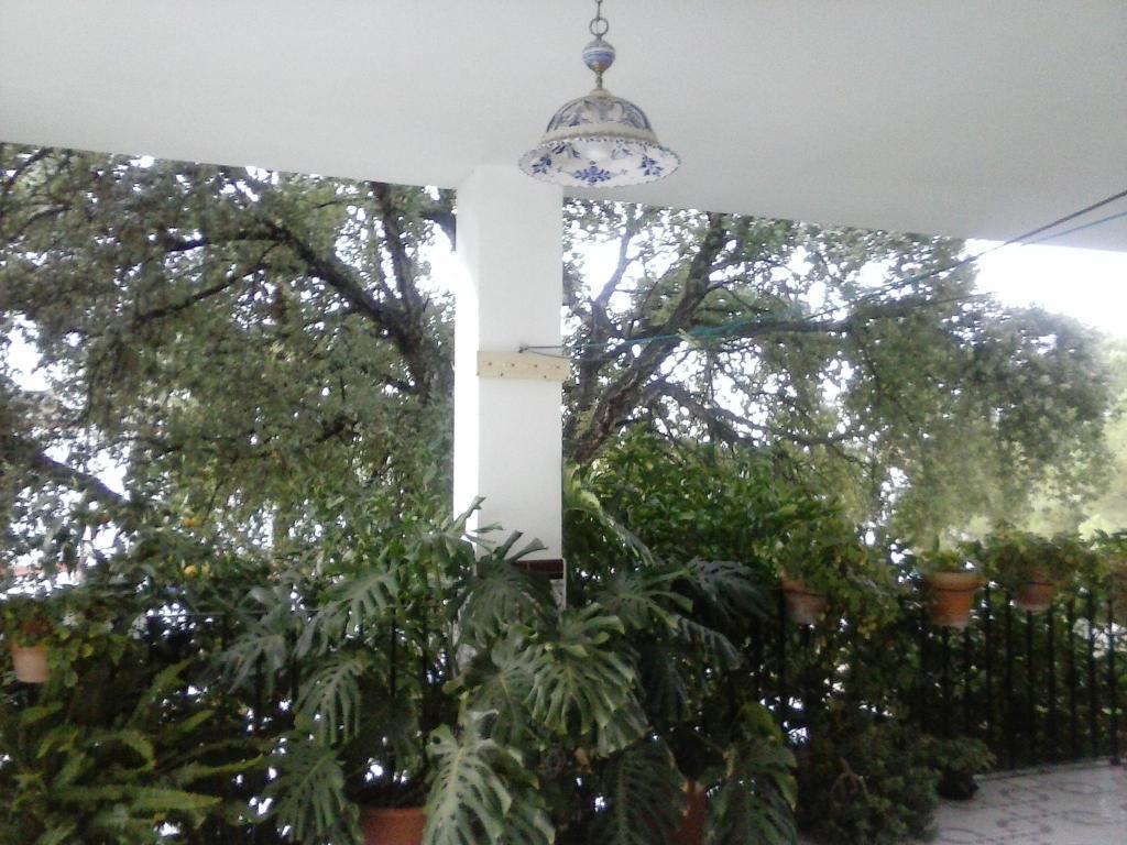 Apartamentos Casa Gil
