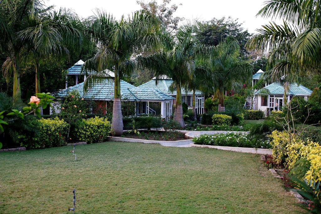 Village Machaan  (  Division of V-Village Resorts Pvt Ltd )