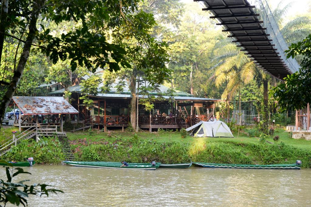 Freme Rainforest Lodge