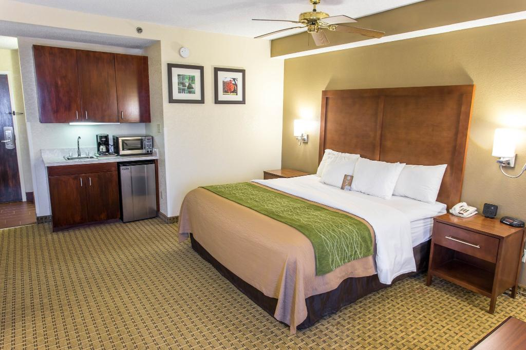 Comfort Inn Hammond