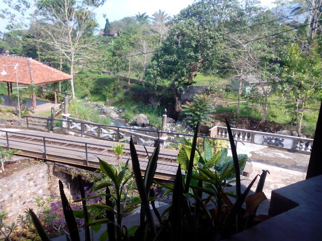 Ever Green Village