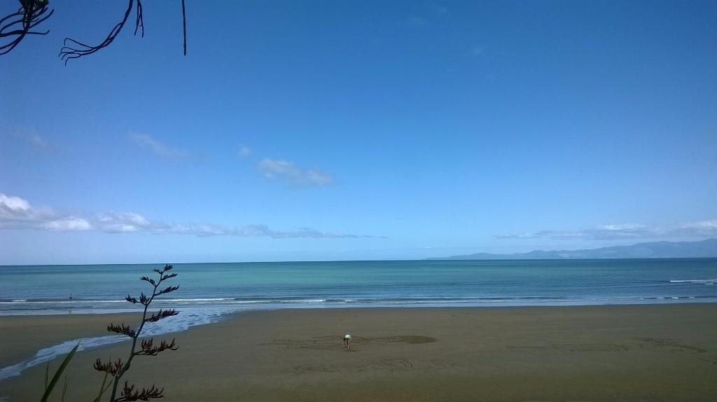 Pakawau Beach Camp