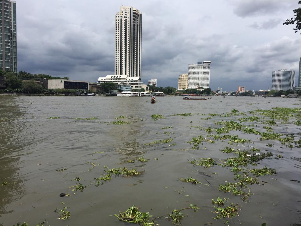 River Side Bangkok
