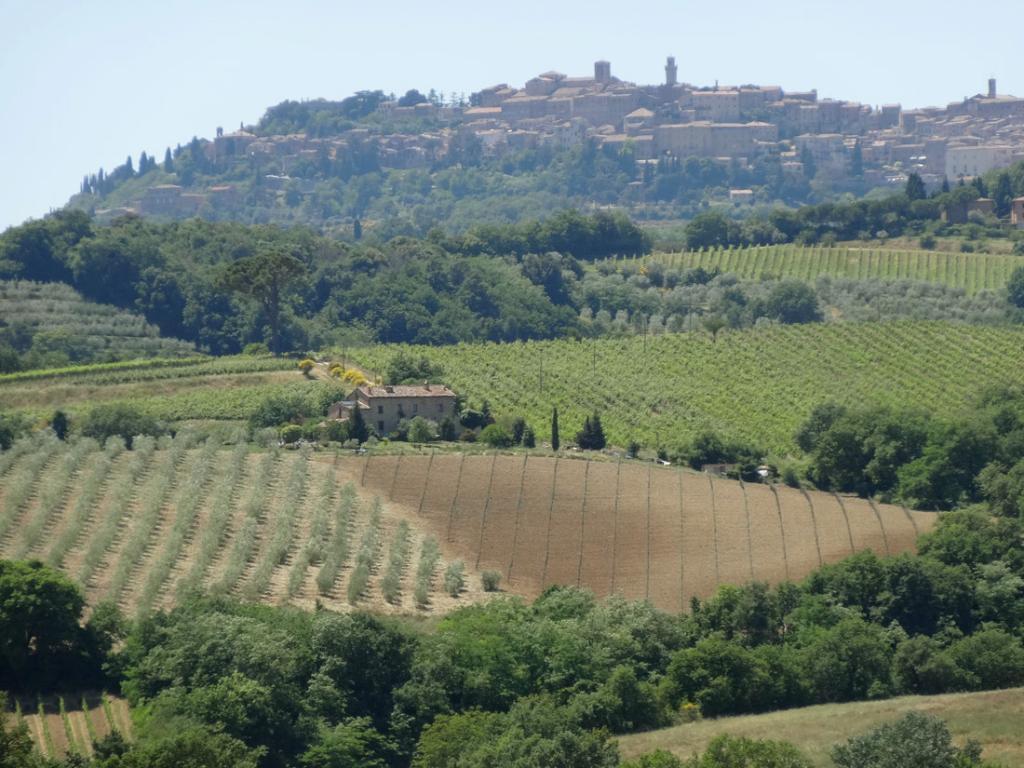 Agriturismo La Falconara