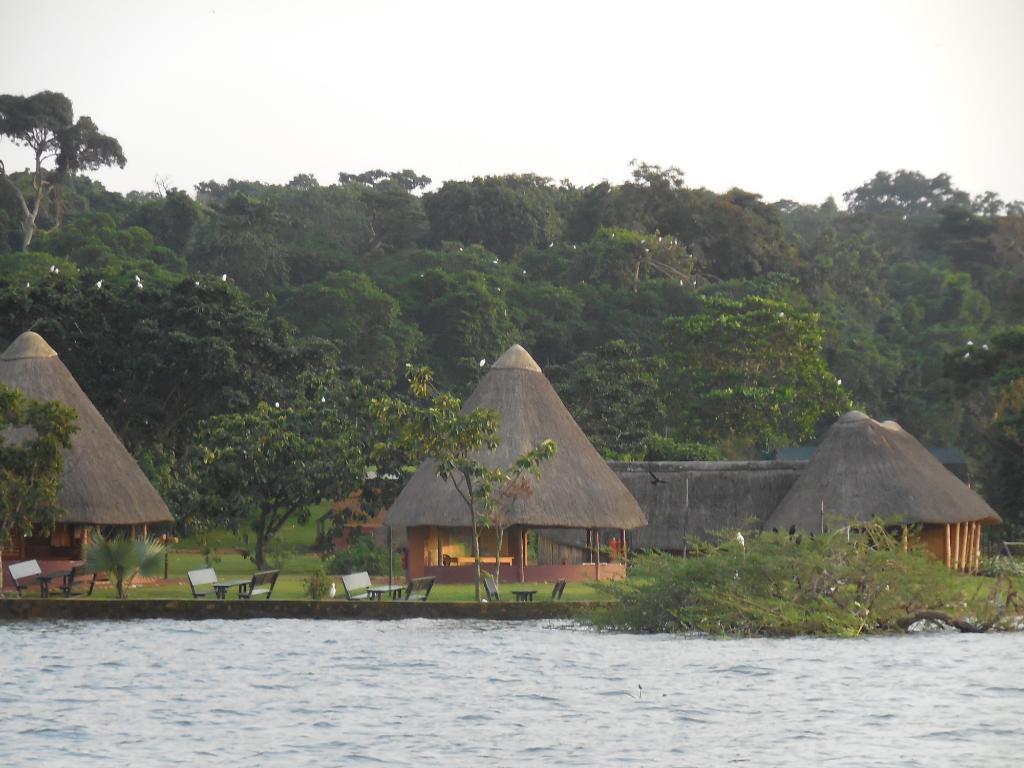 Ngamba Island Tented Camp