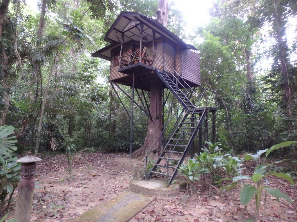 Khao Sok Nature Resort