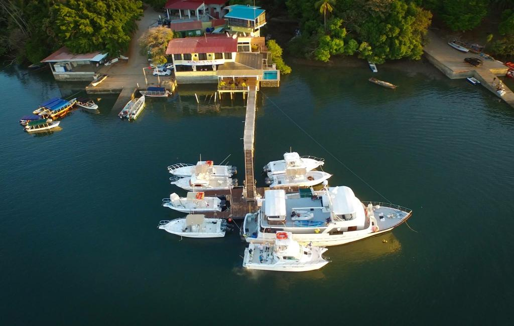 Panama Sport Fishing Lodge