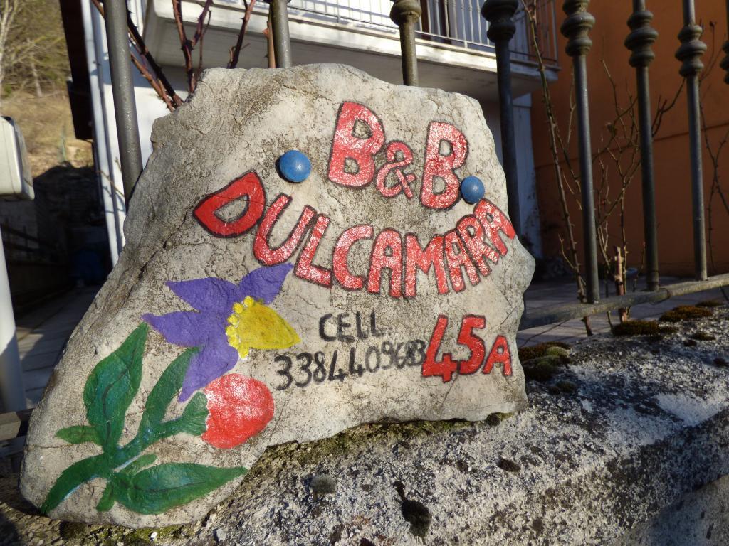 B&B Dulcamara