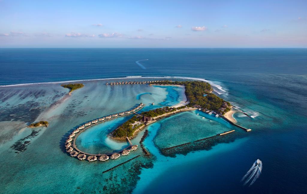 سينامون دونفيلي جزر المالديف