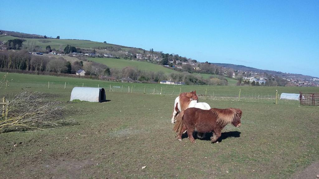 West Standen Farm