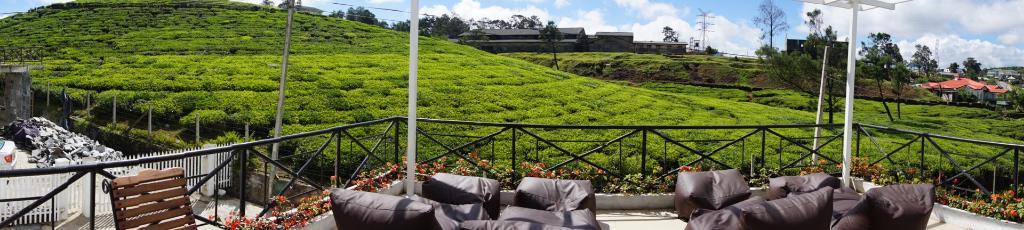 Villa Tea Fields