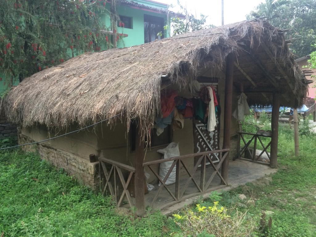 Tree Land Lodge