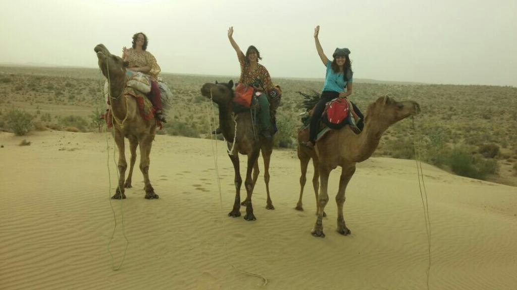 Desert Anna Safari & Camp