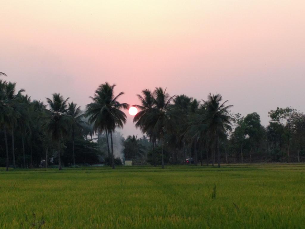 Goan Corner