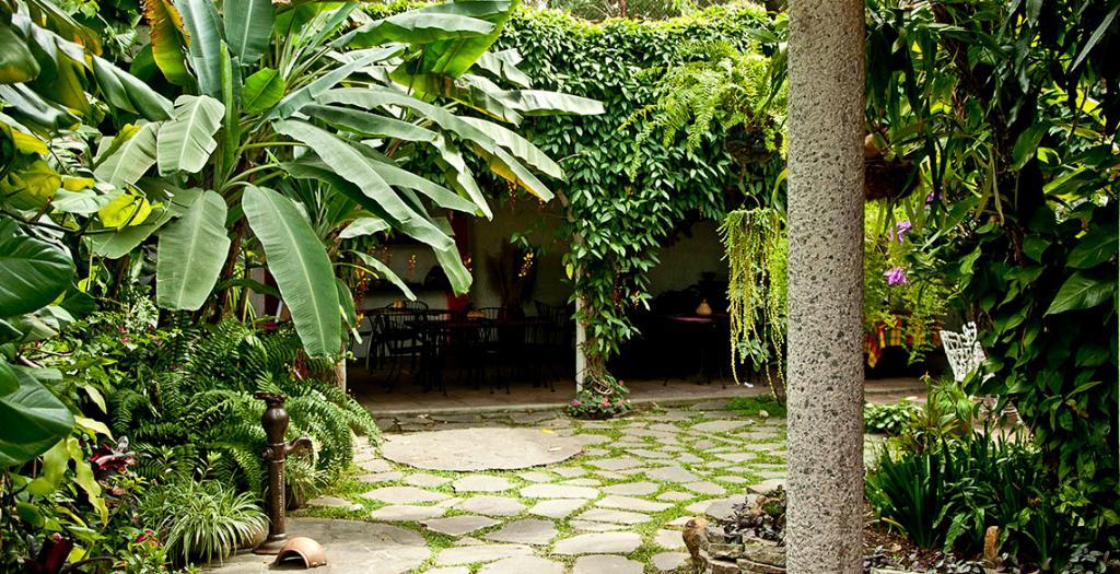 Arbol de Fuego Eco-Hotel