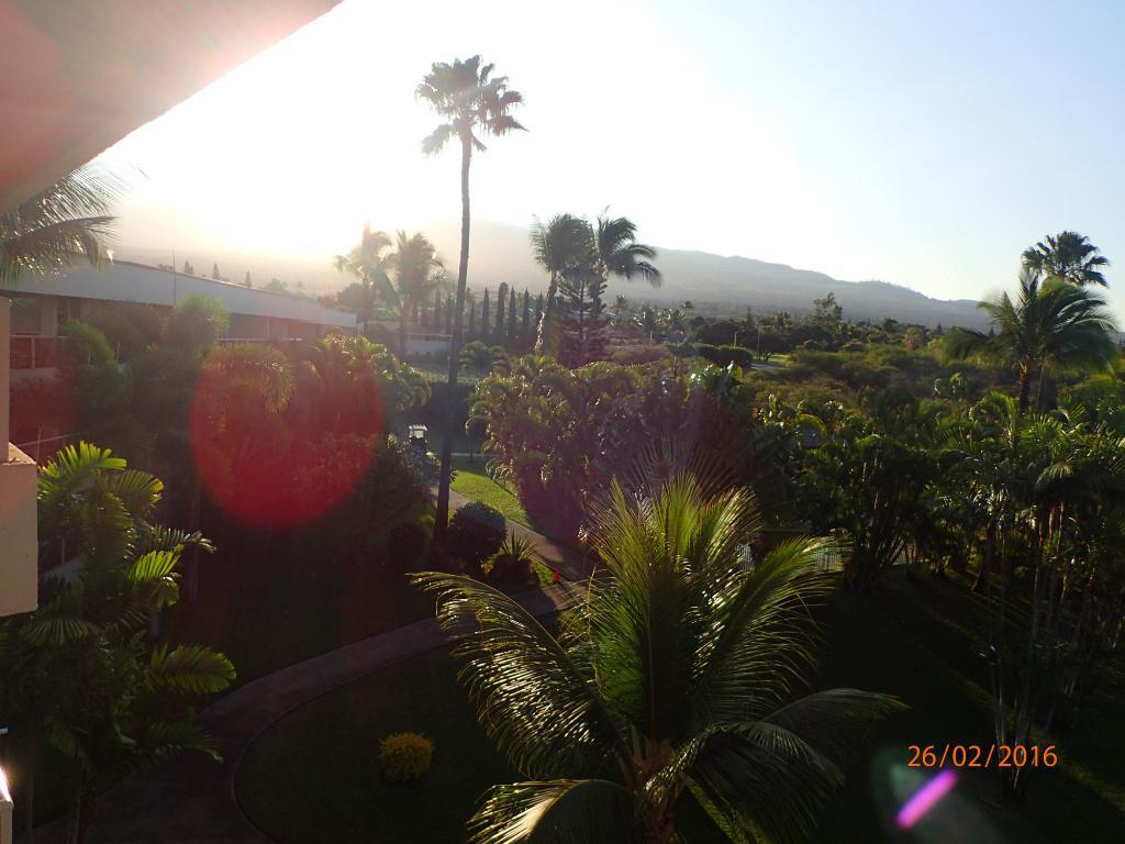 Maui Banyan Condos